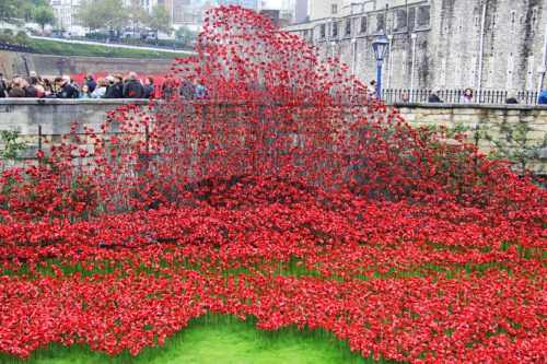 888246-ceramic-poppies-tower-of-london-remembrance-day-designboom-03